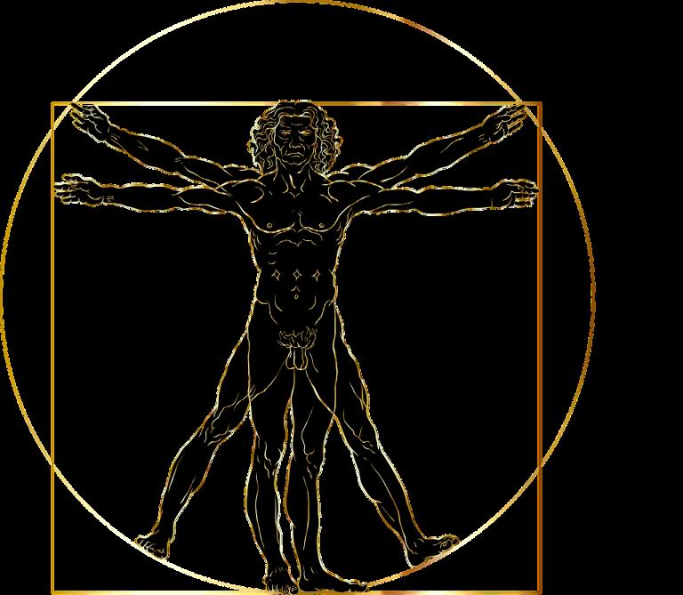 vitruvian man, leonardo da vinci, renaissance